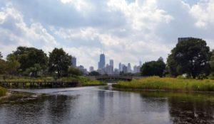Lincoln Park Lake Chicago
