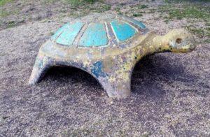 sad turtle, mcarthur park, san antonio